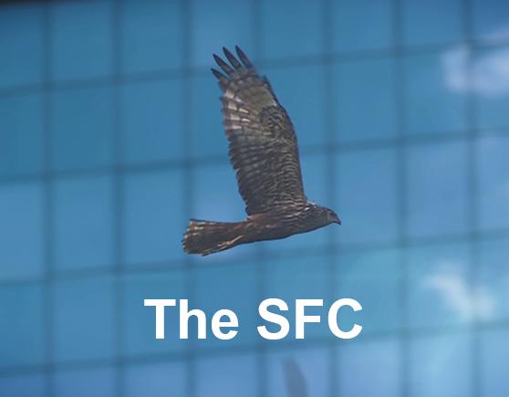 The SFC